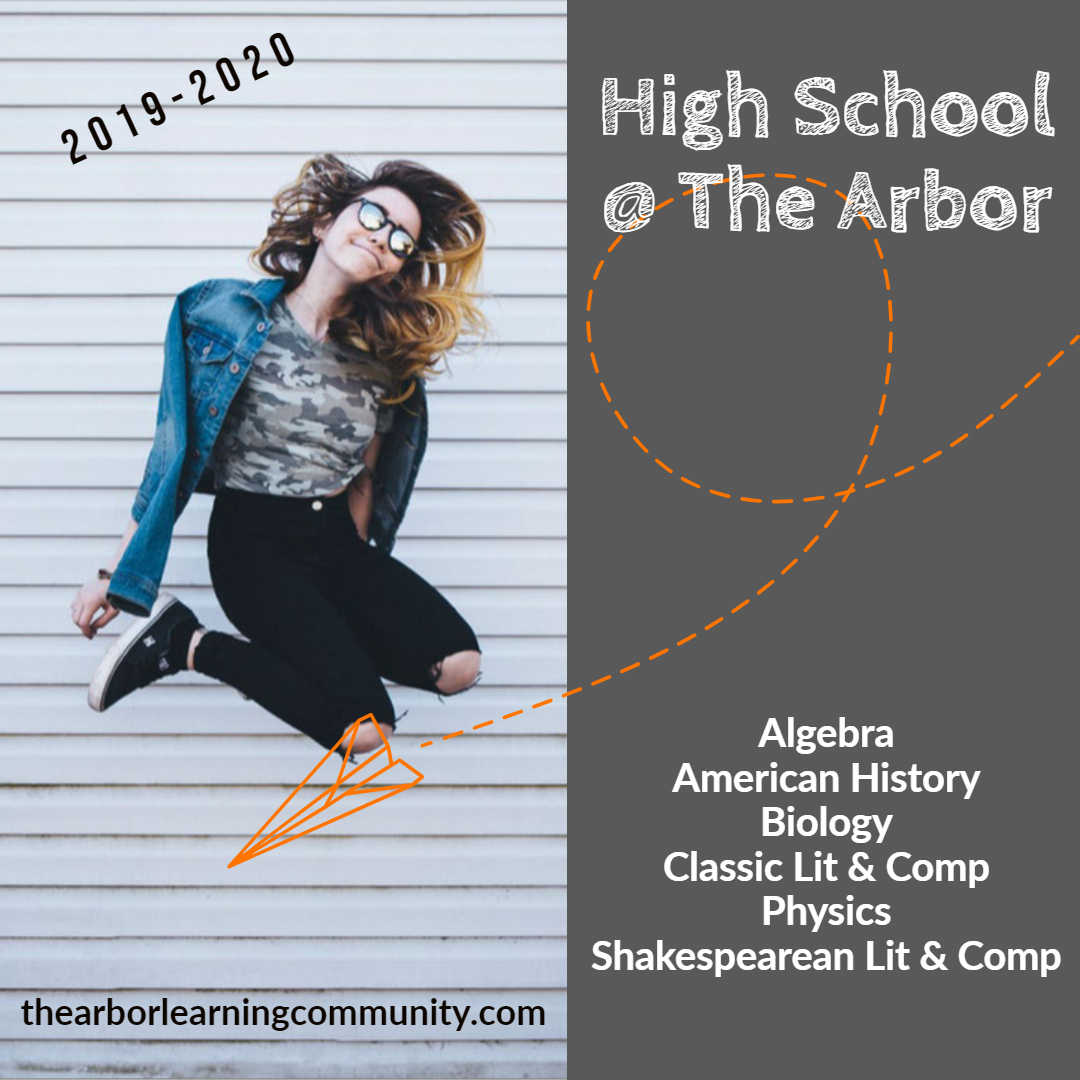 High School at The Arbor, Algebra, Amerian History, Biology, Literature and Composition, Physics